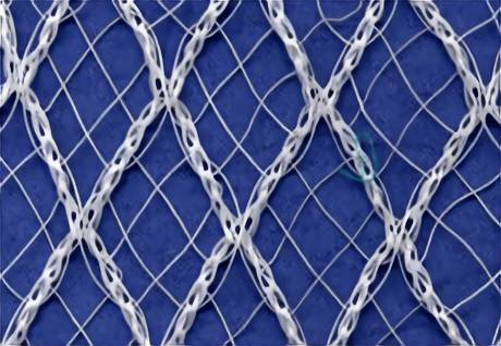 Anti-bird Netting with Three Types in Agriculture Using